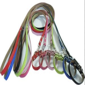 Leather Collars & Leads