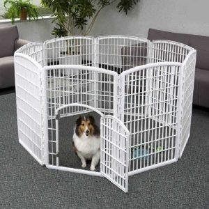 Dog Pen & Creat